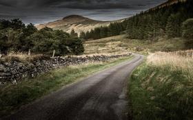 Обои дорога, небо, забор