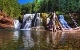 Обои зелень, лес, деревья, река, камни, водопад, мох