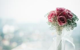 Обои цветы, розы, букет, лепестки, розовые