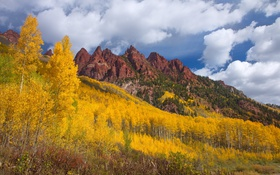 Обои осень, деревья, горы, природа, склон, осина