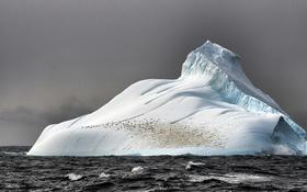 Обои лед, море, айсберг, глыба