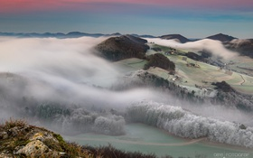Обои туман, утро, леса, холмы
