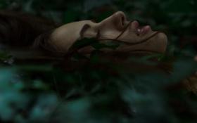 Картинка девушка, лицо, профиль