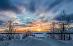 Обои зима, небо, облака, снег, деревья, пейзаж, закат
