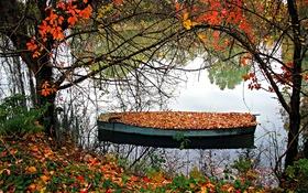 Картинка осень, листья, деревья, озеро, лодка