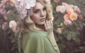 Картинка цветок, девушка, цветы, природа, розы, платье, блондинка