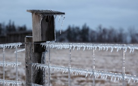 Обои лёд, забор, природа