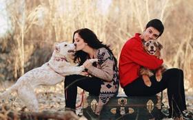Обои собаки, люди, друзья