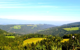 Обои лес, деревья, горы, поля, Австрия, домики, луга