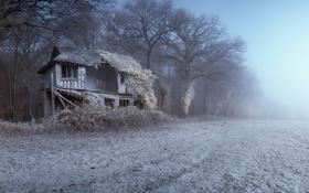 Обои туман, дом, поле