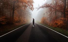 Обои человек, скейтборд, Дорога, туман, деревья, лес