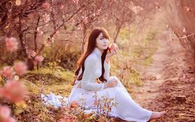 Картинка девушка, яблоко, сад, азиатка