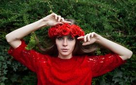 Картинка взгляд, девушка, цветы, лицо, фон, руки