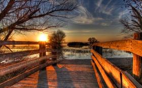 Обои Merced National Wildlife Refuge, камыши, озеро, солнце, ветки, закат, Калифорния