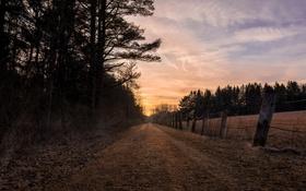 Обои дорога, забор, вечер