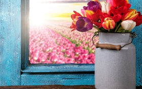 Обои colorful, окно, тюльпаны, flowers, tulips, window, bouquet