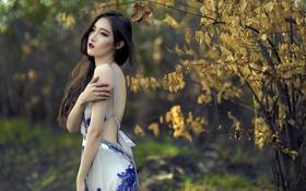 Картинка осень, девушка, азиатка
