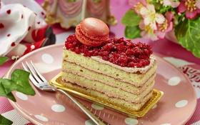 Картинка торт, слои, десерт, макурун