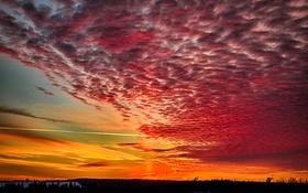 Обои небо, облака, вечер, зарево