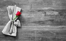 Обои romantic, wood, heart, rose, love, сердце, любовь