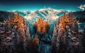 Картинка зима, снег, деревья, горы
