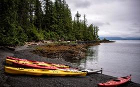 Обои деревья, побережье, лодки, Аляска, США, Alaska, Ketchikan