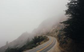 Обои дорога, туман, трасса