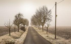 Обои дорога, поле, природа
