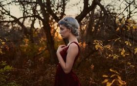 Картинка девушка, прическа, профиль