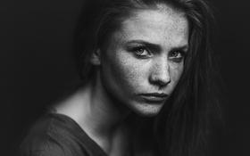 Картинка Девушка, Фото, Взгляд, Портрет, Боке, Черно-Белое