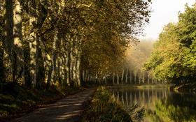 Картинка деревья, парк, река, Франция, дорожка, Castelnaudary