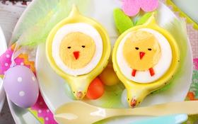 Обои цветы, яйца, весна, Пасха, flowers, spring, Easter