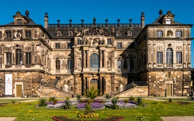 Картинка небо, цветы, газон, голубое, Германия, Дрезден, солнечно