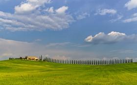 Обои поле, небо, трава, облака, деревья, дом, холмы