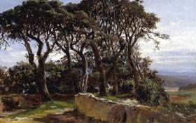 Обои деревья, пейзаж, картина, Карлос де Хаэс, Пинии