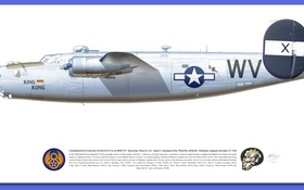Обои design, american, p 51d decals