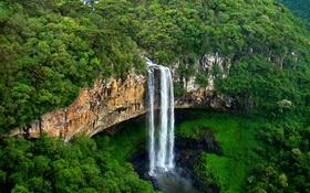 Обои лес, деревья, скала, обрыв, поток, Бразилия, штат Риу-Гранди-ду-Сул