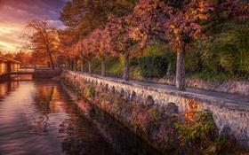 Обои набережная, Швейцария, озеро, деревья, осень