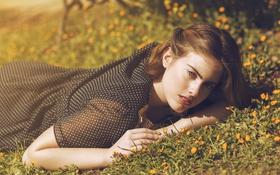 Обои лето, трава, девушка, лицо, волосы, лежит, красотка