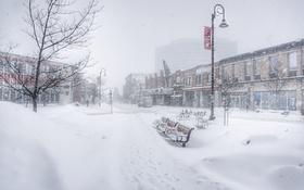 Картинка street, bench, ottawa