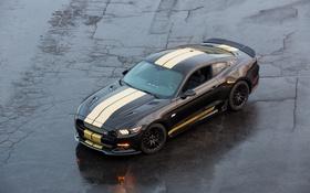 Картинка Mustang, Ford, Shelby, мустанг, форд, GT-H