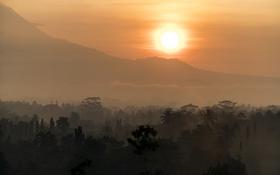 Обои пейзаж, рассвет, Indonesia, Borobudur