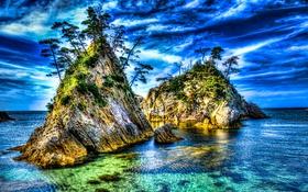 Обои море, деревья, природа, скалы, hdr