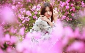 Картинка лето, взгляд, цветы, азиатка