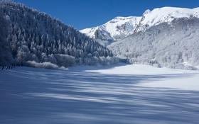 Обои зима, лес, снег, горы, Франция, тени, France