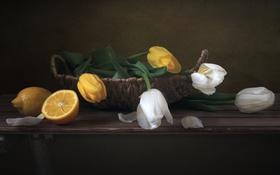 Обои лимон, корзина, тюльпаны