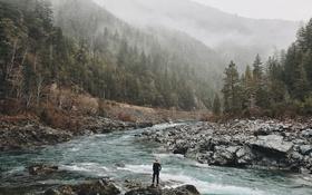 Обои лес, туман, река, United States, горная, photo, California