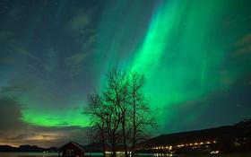 Обои небо, звезды, пейзаж, северное сияние