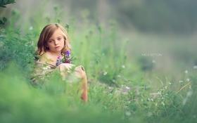 Обои девочка, природа, взгляд