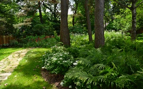 Обои зелень, трава, деревья, цветы, парк, забор, дорожка